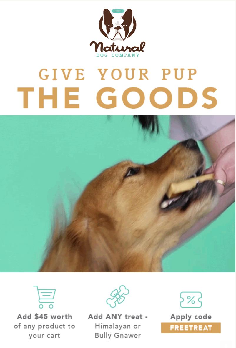 natural dog company niche marketing