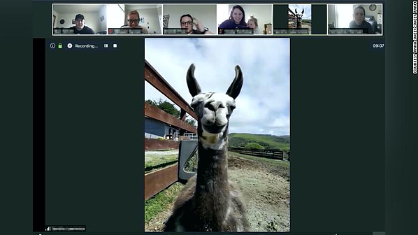 farm tour virtual conference call