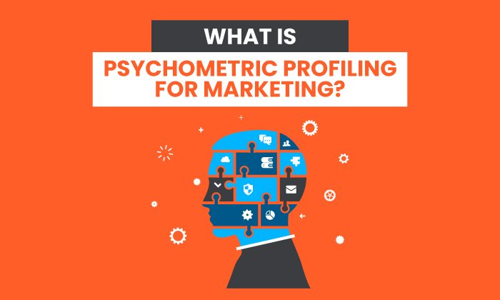 What is Psychometric Profiling for Marketing?
