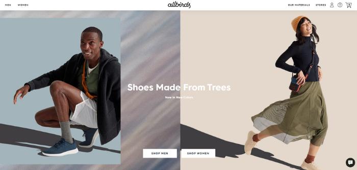 how to target millennials through paid ads - allbirds website