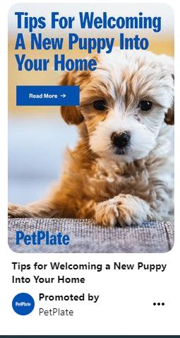 pet owners find brands like PetPlate on social media