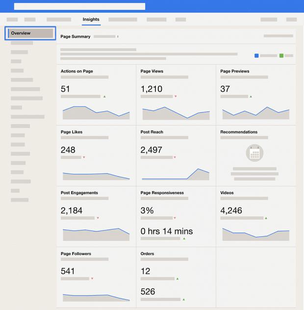 Screenshot of the Facebook analytics overview dashboard
