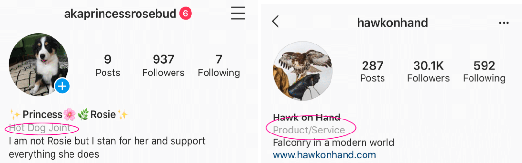 Convert Instagram account to business profile