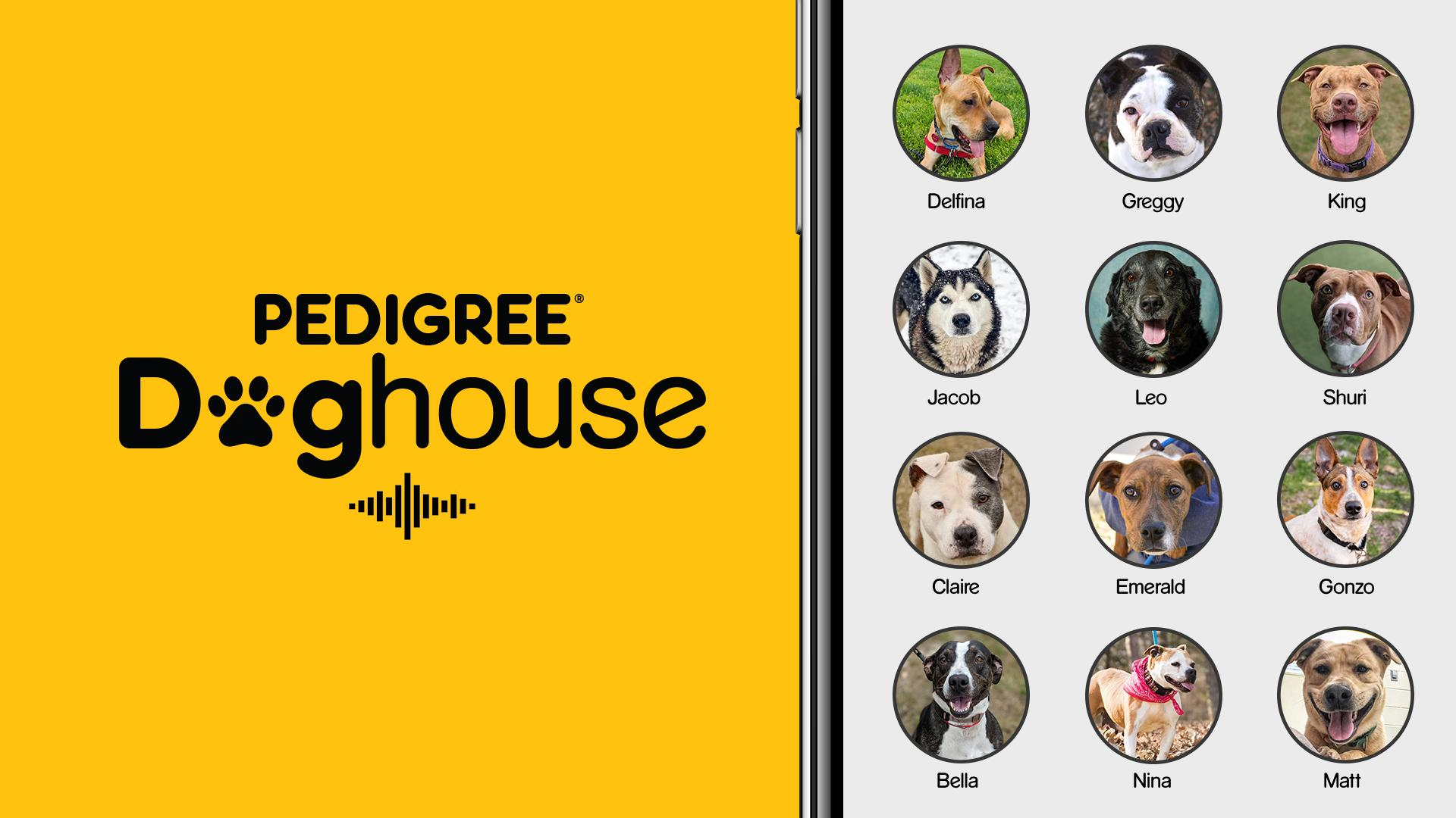 Pedigree doghouse rooms on the Clubhouse app