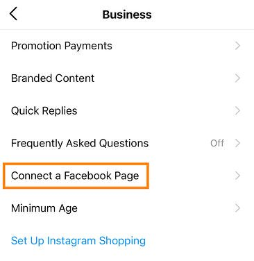 """The """"connect a facebook to your instagram business account"""" button on the Business tab in your Instagram app"""